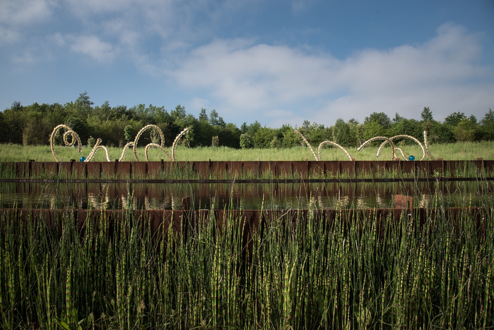 Bamboo breaking quietly into a view as designed by famed landscape architect Louis Benech.